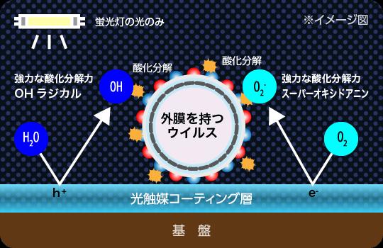 蛍光灯の光のみで外膜を持つウイルスを強力な酸化分解力